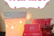 Scentsy / by Janine McGinnis Hines