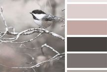 { creature color } / by design seeds