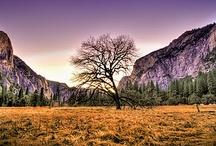 Nature's Beauty / Nature's beauty -- true