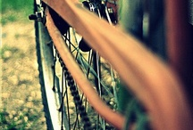 Bicycle. / by ChickKa Chick