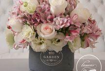 Jardín & flores