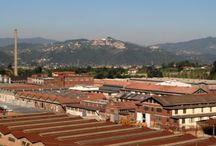 La Ceramica Ligure Vaccari / Una delle più importanti realtà produttive nel settore della ceramica del XX secolo.