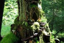 stump / by JBirdHome *