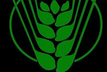 Indian Council of Agricultural Research ICAR Recruitment 2016