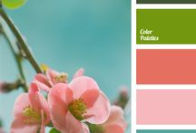 Color and Paint / How to combine colors beautifully at home.