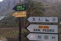 Mc travels Gran Canaria