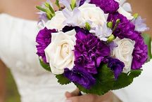 Wedding / by Amy Sullivan
