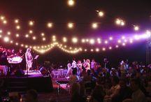 Galas and fundraising / by Erin Elizabeth