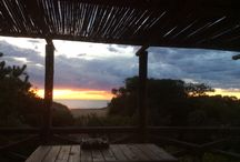 Cariló Argentina Casa Bamboo / Casa Bamboo Carilo Arce y Playa  #carilo