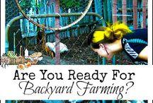 Outdoor: Urban Farming
