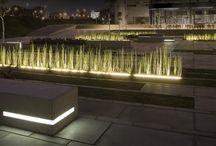 garden light/ ogród świateł
