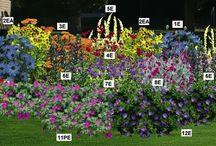 macif jardin