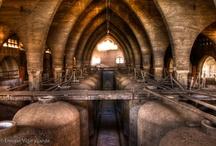 Wine Finds / by Lisa Darley-Graham