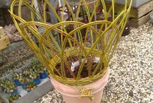 Willow garden ideas