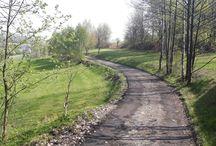 My walks/hikes