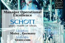 Schott is looking for professionals!