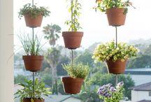 jardines y cobertizo