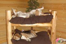 Boni ágy