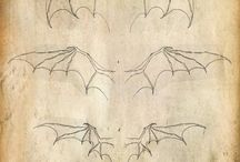 Dragon , wings