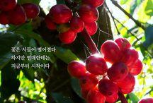 박노해의 걷는 독서