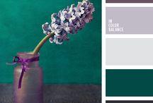 Colour: Green & Purple