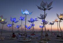 Luminous Flowers