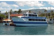 Lanai / Provided by HawaiiActive.com, Hawaii's finest Activities, Tours & Fun Things To Do on Oahu, Maui, Kauai and the Big Island!