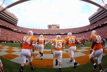 Good Ole Rocky Top / by Lacey Moore