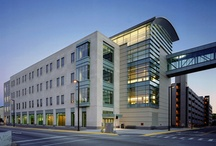 Majors & Academics / by Purdue University