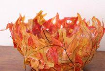 Seasonal - Autumn & Winter