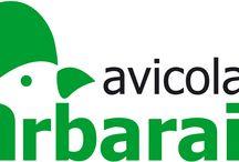 Identidad corporativa / Nuestros logos, adaptaciones...