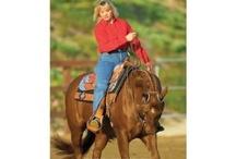 Western pleasure horses