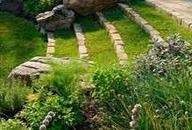 Gardens / by Carly Shepherd