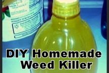 Economy weedkillers/Gardening
