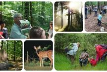 Sorties nature kidiklik / Se promener dans les bois, faire des châteaux de sable, planter des fraises... Suivez nous !