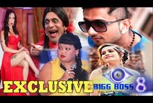 Bigg Boss 8 CONTESTANTS REVELAED