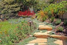 Juniper Landscape Portfolio / Projects completed by Juniper Landscape Compnay