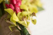 ARTFLOWER: Small & intimate tropical wedding