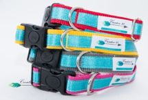 collars for dog/ Obroże Creative 21 / collars for dog hand made !!!