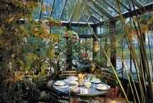 zimni zahrady