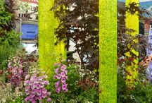 My RHS Chelsea Flower Show 2017