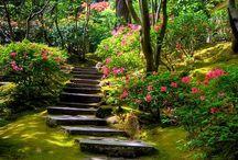 Kerti utak/Garden paths