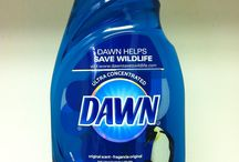 Blue Dawn to the rescue