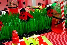 Ladybug Party Ideas / by Birthday Express