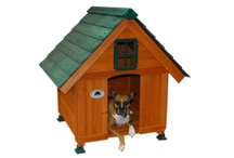 Dog House / Our all-cedar dog cottages are a great home for the family's best friend. These outdoor dog houses provide a comfortable amount of space for all- sized dogs. Your beloved pup will enjoy the gable window that allows natural light to illuminate their home. These cottages are more than just an outdoor house; they will become your dog's haven.  