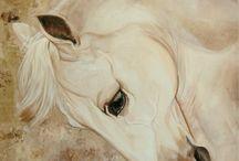 horses- les chevaux- konie