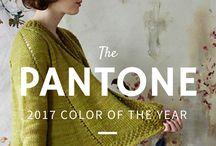 barva roku 2017