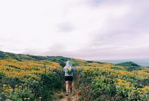 Bay area trails for hiking
