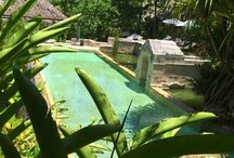 Kamalaya Community / Photos by our guests who have stayed at Kamalaya.