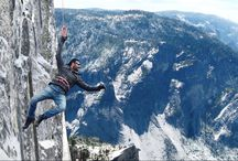 https://www.behance.net/gallery/48006571/Shivaay-(2016)-Movies-Online-Free-Engg-Sub